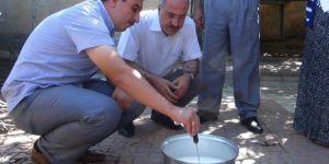 """Bingöl'de """"Güvenli Taze Peynir Yapımı Projesi"""" sona erdi"""