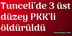 Tunceli Ovacık'ta 3 üst düzey PKK'li öldürüldü