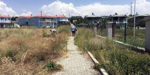 Van Büyükşehir Belediyesinden yazlık denetimi