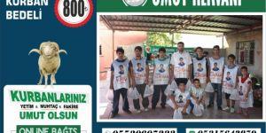 Umut Kervanı Mersin'de kurban çalışmalarına hız verdi