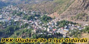 PKK Şırnak Uludere'de 3 işçiyi öldürdü