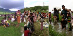 Bangladeş'e sığınan Arakanlıların sayısı 500 bini aştı