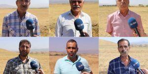 Verim alamayan mağdur çiftçiler destek bekliyor