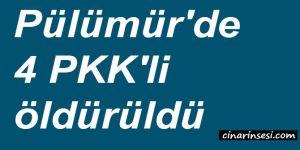 Tunceli Pülümür'de 4 PKK'li öldürüldü