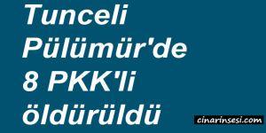 Tunceli Pülümür'de 8 PKK'li öldürüldü