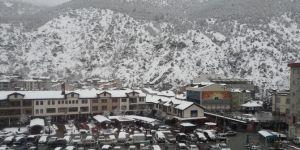 Gümüşhane'de yoğun kar yağışı etkili oldu