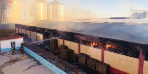 Diyarbakır'da karton fabrikasında yangın: 8 yaralı
