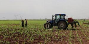 Genç çiftçi desteği başvuruları 30 Nisan'da sona eriyor