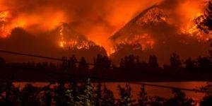 Orman yangını çıkaran çocuğa 36 milyon dolar ceza