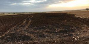Diyarbakır Ekinciler köyünde yıldırımın düştüğü tarlada 15 dönüm buğday kül oldu