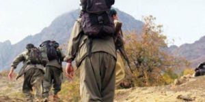 Nusaybin'de 2 PKK'li teslim oldu