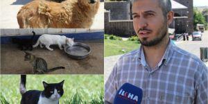 """""""Konuşamayan hayvanlar hakkında Allah'tan korkun"""""""