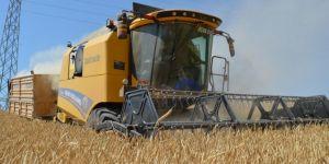 Bitlis'te buğday hasadı çiftçinin yüzünü güldürdü