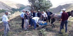 Bingöl Yedisu'da çoban eşekle uçuruma yuvarlandı