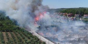 Bursa Mudanya'da korkutan orman yangını