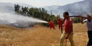 Bingöl Genç'teki orman yangınının zarar tespit çalışması sürüyor