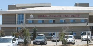 Bismil Devlet Hastanesinde yılan paniği