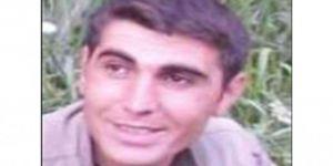 Yeşil listede aranan PKK'li öldürüldü
