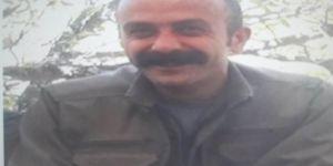 Gri listedeki MLKP'li Tunceli Ovacık kırsalında öldürüldü