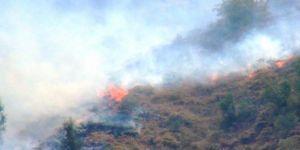 Bitlis Mutki'de çıkan yangın kontrol altına alınmaya çalışılıyor