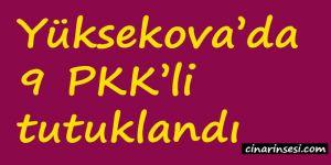 Hakkari Yüksekova'da 9 PKK'li tutuklandı