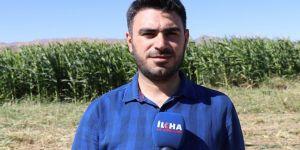 Çiftçiler ikinci ürünün ekimi için özendirilmeli