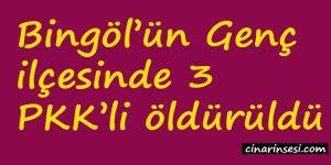 Bingöl'ün Genç ilçesinde 3 PKK'li öldürüldü