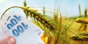 Tarım destekleme ödemeleri bugün başlıyor