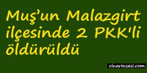 Muş Malazgirt'te 2 PKK'li öldürüldü