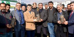 100 aileye 35 bin fıstık fidesi dağıtıldı