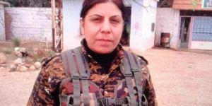 Şanlıurfa Viranşehir'de Suriye uyruklu 1 PKK'li yakalandı