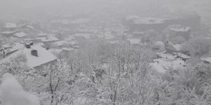 Roads to 242 settlements closed due to snow in east of Turkiye