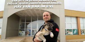 Van'da kurtardığı köpeği sahiplendi