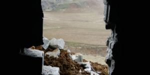 Kozluk'ta hırsızlar ahırın duvarını kırıp hayvanları çaldılar