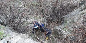 Nusaybin'de uçurumda mahsur kalan keçiler kurtarıldı