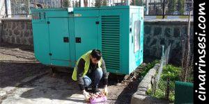 Bismil Belediyesi sokak hayvanlarını unutmadı