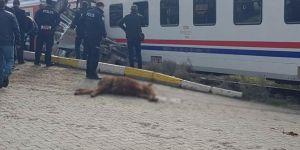 Bismil'de yolcu treni ile pikap çarpıştı: Biri ağır 2 yaralı