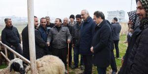 Hilvan Belediye Başkanı Aslan Ali Bayık, hayvan pazarı esnafını ziyaret etti