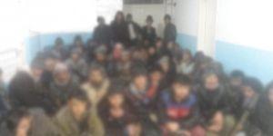 Van'da 75 göçmen yakalandı