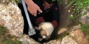 Nusaybin'de kuyuda iki gün mahsur kalan yavru köpek kurtarıldı