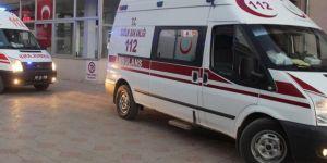 Kâhta'da turistleri taşıyan minibüs devrildi: 13 yaralı