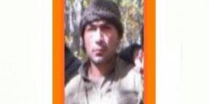 600 bin TL ödülle aranan PKK'li Baykan'da öldürüldü
