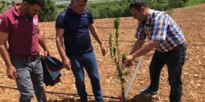 Dicle'de çiftçilere uygulamalı bordo eğitimi verildi