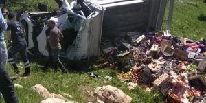 Gercüş'te kamyonet devrildi: 2 kişi yaralandı