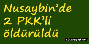 Nusaybin'de 2 PKK'li öldürüldü