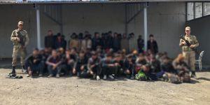 Van'da bir günde yüzlerce göçmen yakalandı