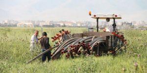 Dünya Çiftçiler Günü'ne buruk girdik