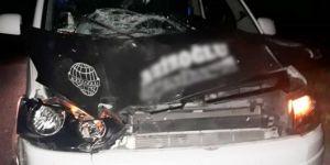Minibüs ata çarptı: 6 yaralı