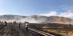 Nusaybin'de hasat bekleyen 100 dönüm ekin küle döndü