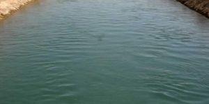 Suruç'ta sulama kanalında boğulma vakası: 2 ölü